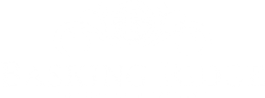 Basking_Ridge_Logo-2-EPS